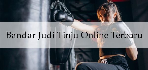 Bandar Judi Tinju Online Terbaru